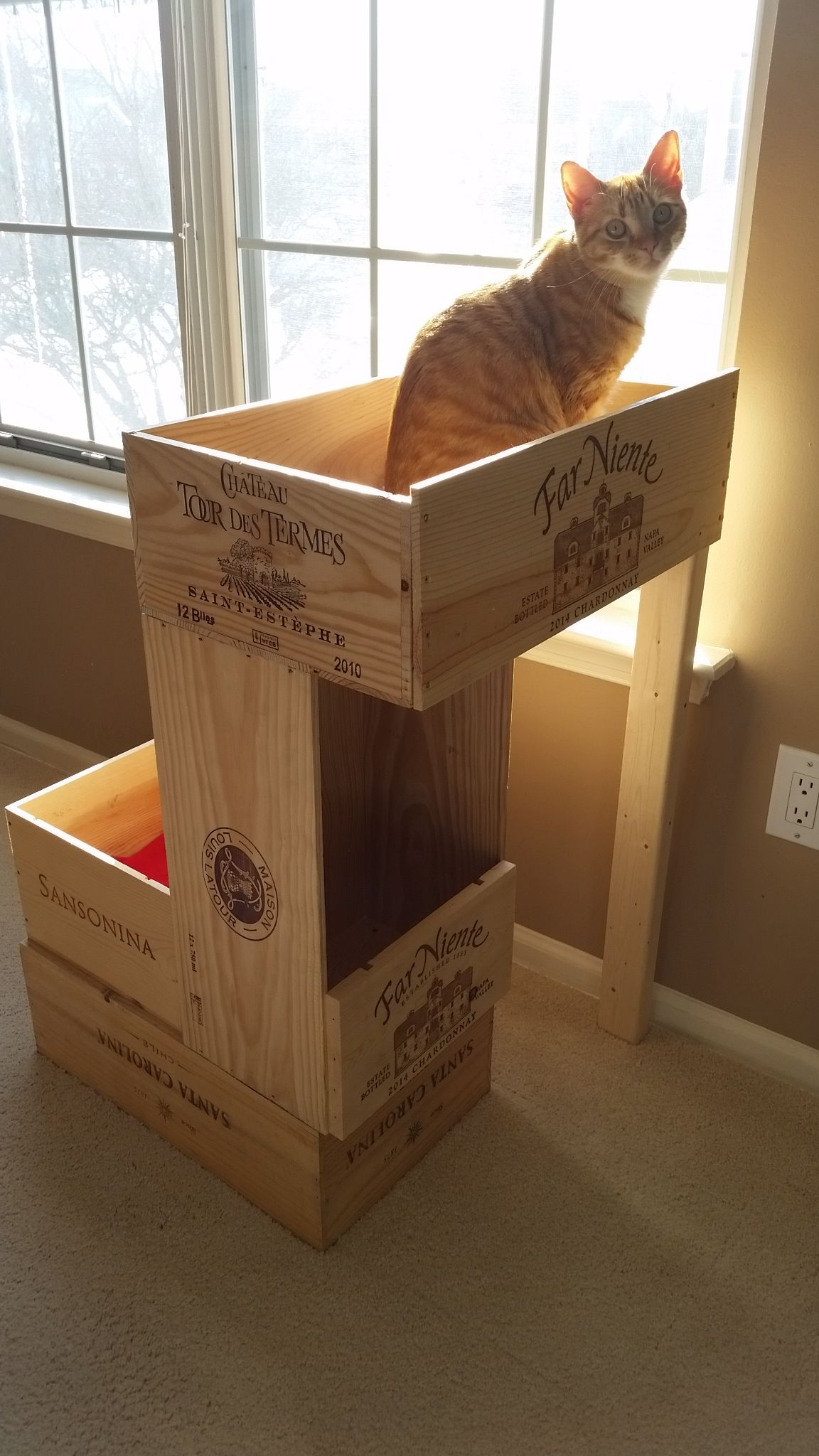 homemade cat condo made from wine crates  i love this  homemade cat condo made from wine crates  i love this     cat      rh   pinterest