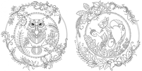 Johanna Basford Enchanted Forest An Inky Quest Coloring Book