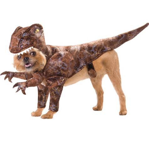Animal Planet Raptor Dinosaur Dog Costume Party City Canada