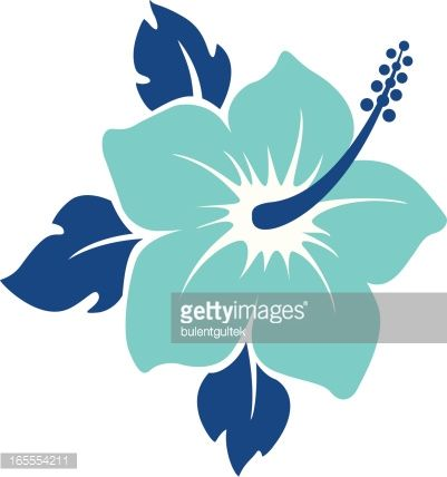 hibiscus flower editable vector illustration hibiscus vector rh pinterest ca hibiscus vector flower hibiscus vector art
