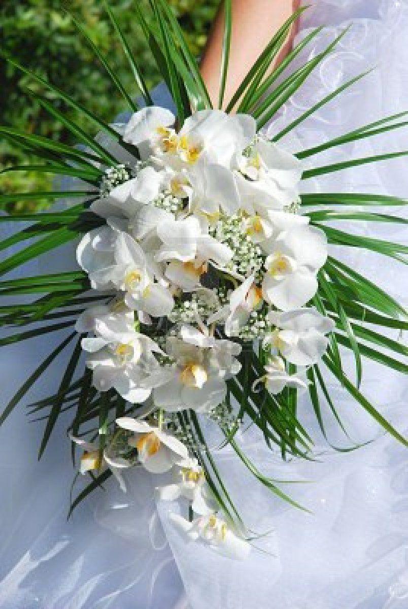 Bouquet Sposa Orchidea Bianca.Sposa Holding Bouquet Sposa Bella Orchidea Bianca Addobbi