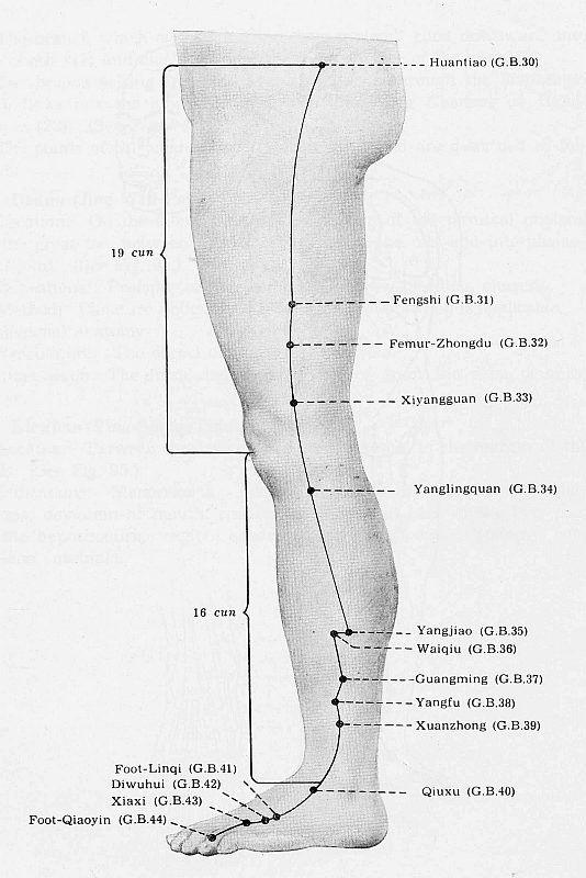 Leg acupuncture points : Massage south minneapolis