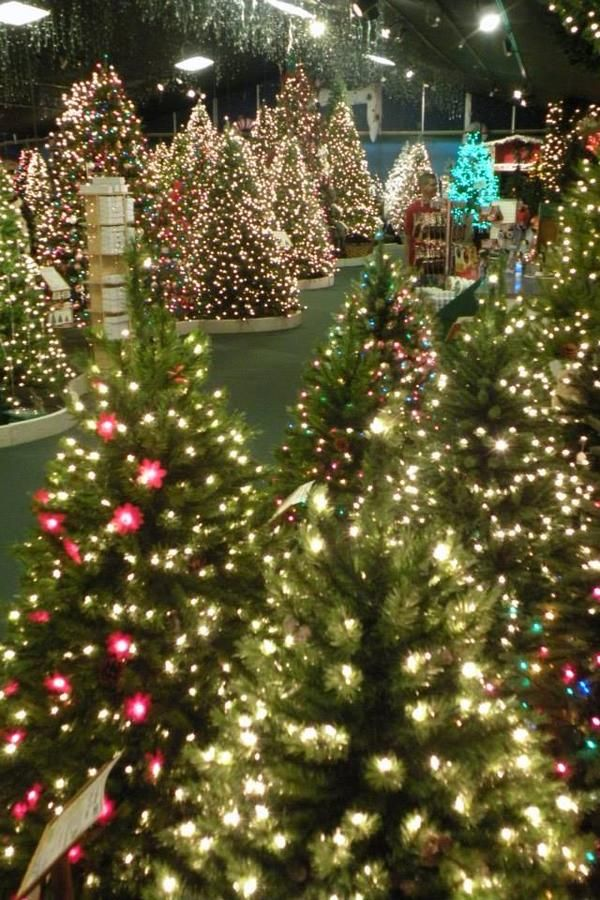 These Southern Christmas Shops Are Open All Year Long Southern Christmas Christmas Store Christmas Wonderland