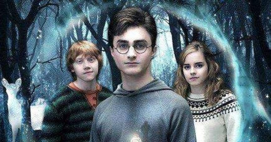 All Harry Potter Movies Ranked Best To Worst Harry Potter Fan Theories Harry Potter Movies Fan Theories