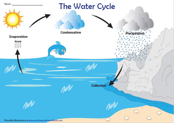 Water cycle chart four step process also science worksheets rh pinterest