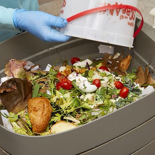 Ready To Start Composting Year-round? Find Out How A Worm