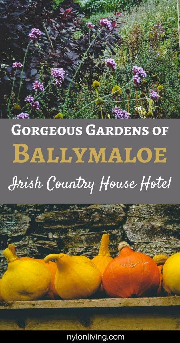 Ballymaloe Country House Hotel   Ireland's Blue Book   Ballymaloe Gardens