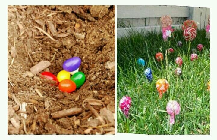 Cute Easter Tradition 1 Buy some magic Jelly Beans 2 Plant them in your yard this only works the night before Easter wink wink 3 The next morning go out and see what grew...