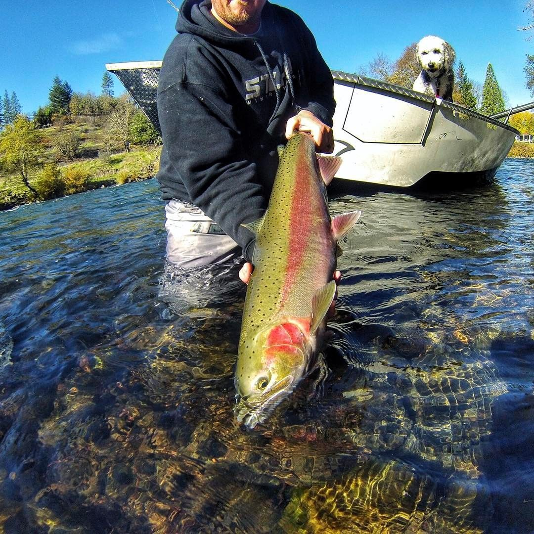 See This Instagram Photo By Oregon Tarheel 49 Likes Fly Fishing Accessories Steelhead Fishing Fish