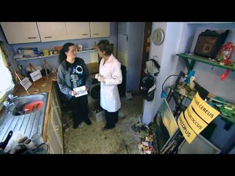 How Clean Is Your House S04 E05 Youtube Cleaning House