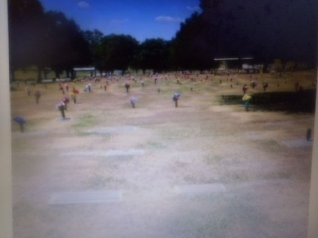 1 burial plot at roselawn funeral home in seagoville tx