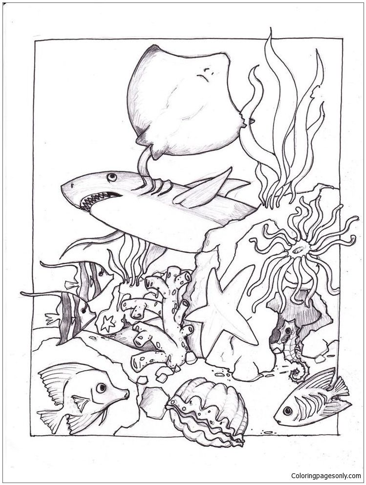 Marine Life Under The Ocean Floor 1 Coloring Page Free Coloring