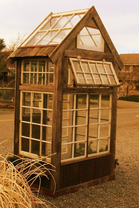 Greenhouse out of old windows outdoor living growing for Reclaimed window greenhouse