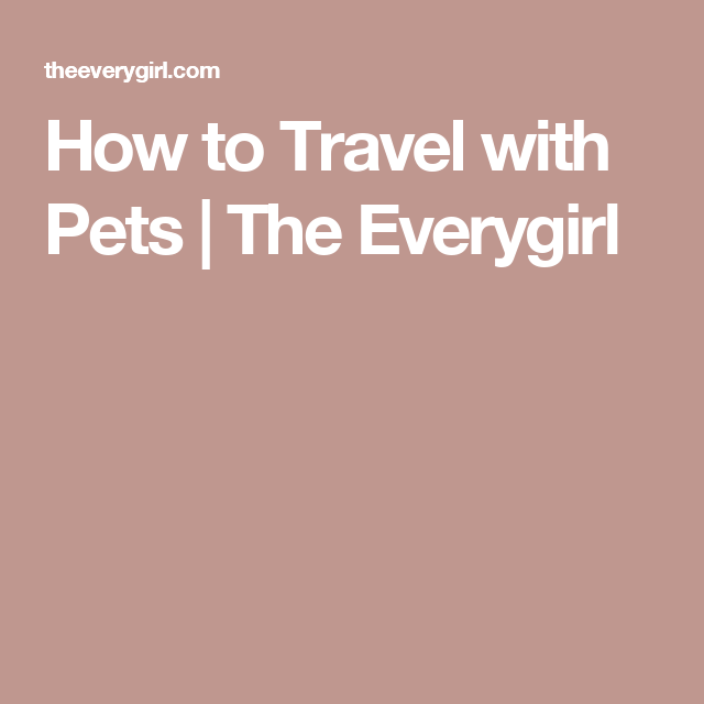 How to Travel with Pets | The Everygirl