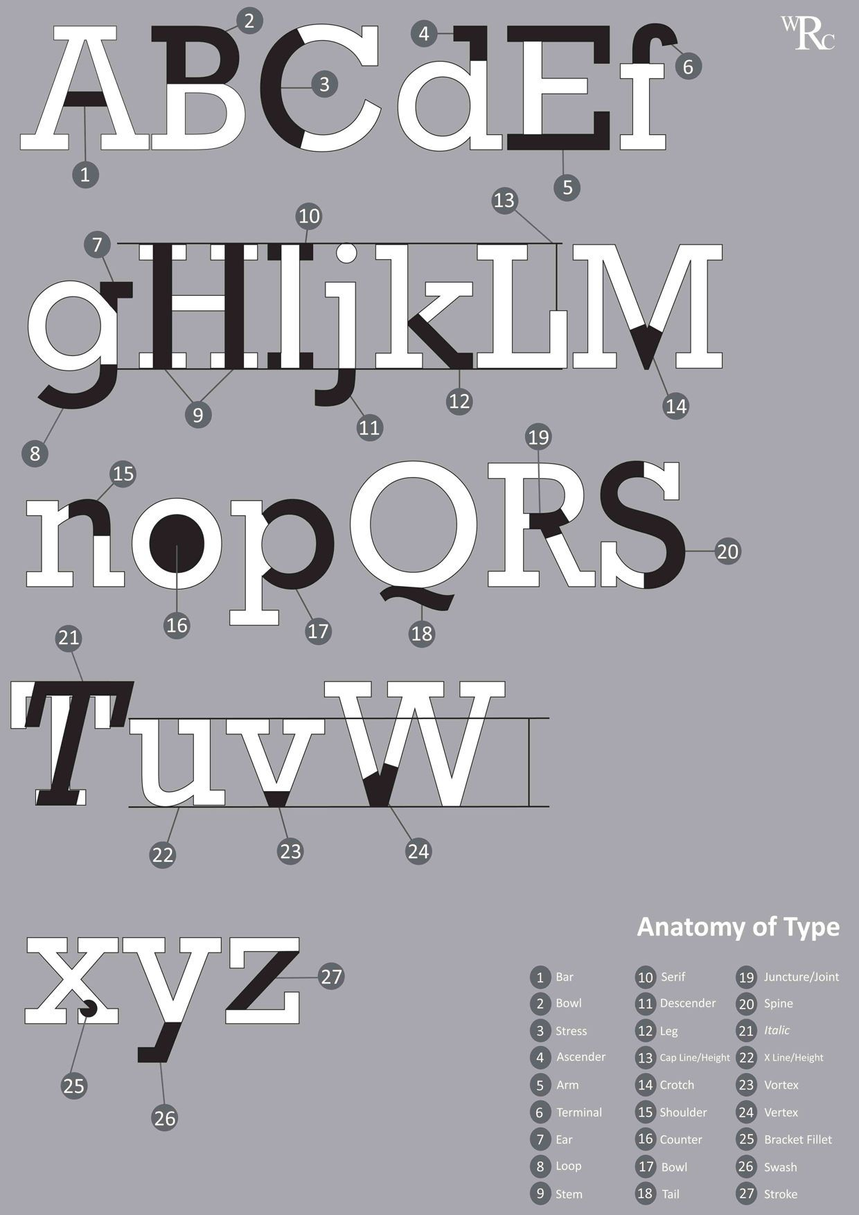 Rockwell | Typeface Anatomy Posters | Pinterest ...