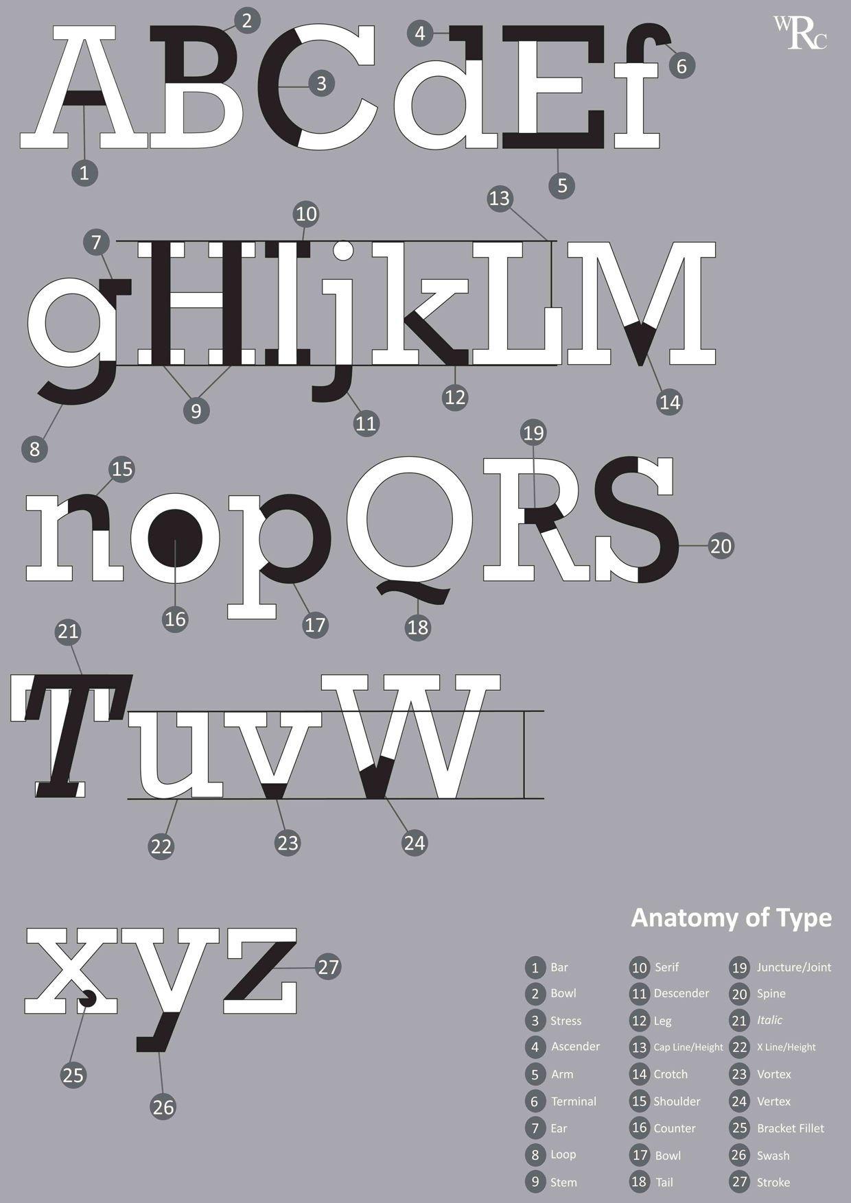 Rockwell Typeface Anatomy Posters Pinterest Typography Typo