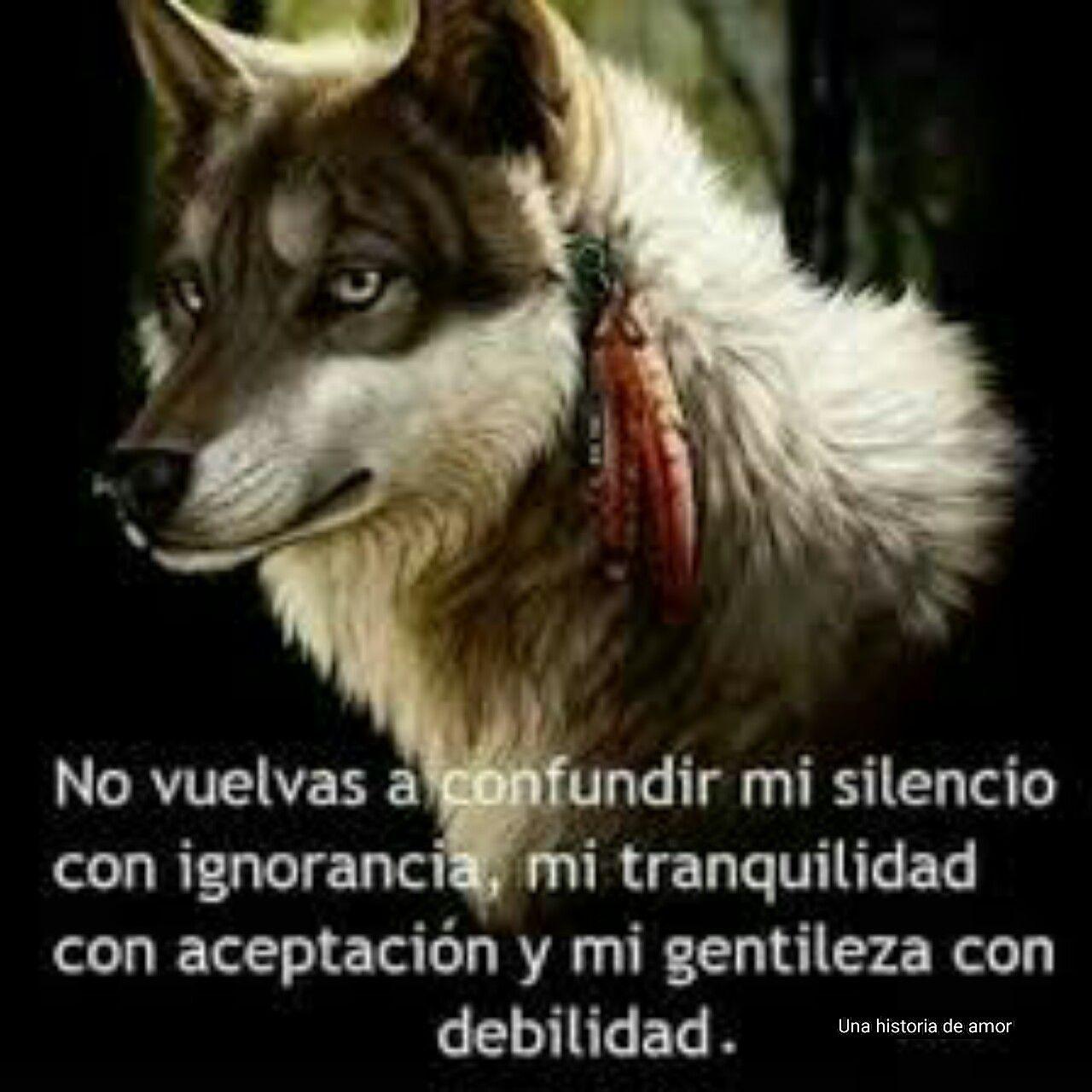 Mejor De Imagenes De Lobos Con Frases De Amor Mejor Casa Sobre