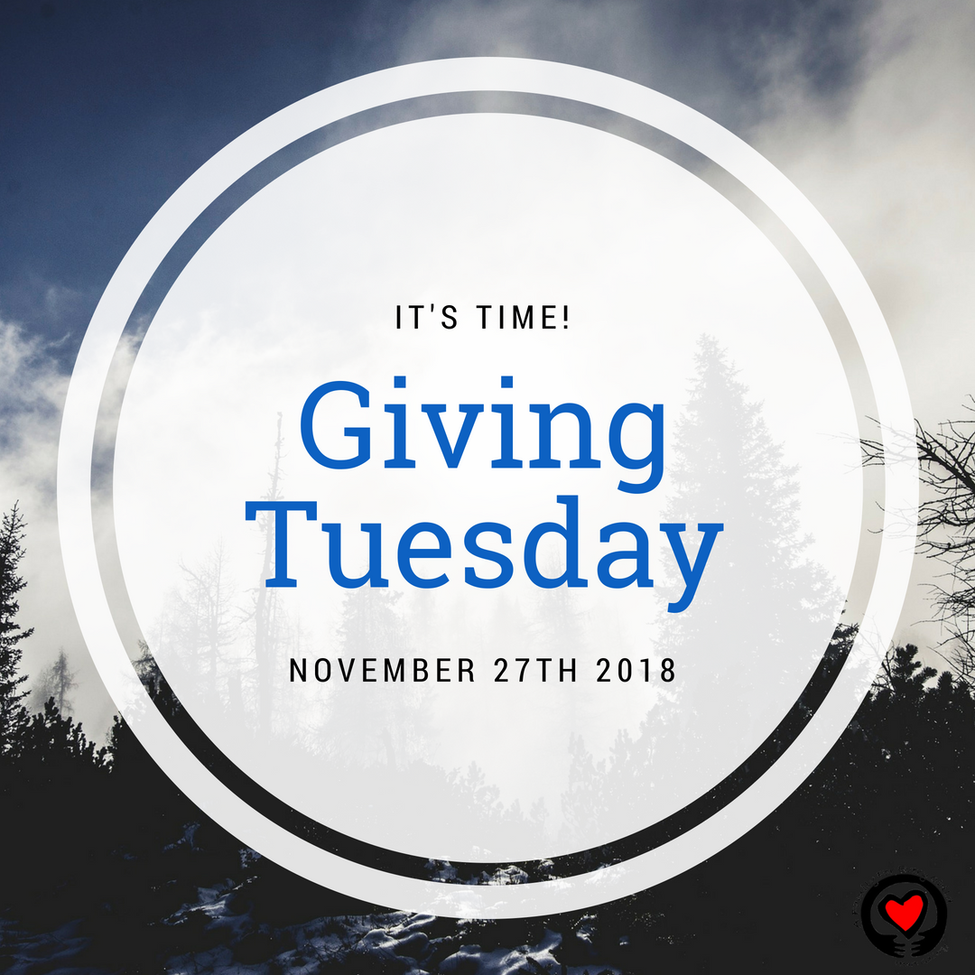 You Can Change The System Give Back On Givingtuesday