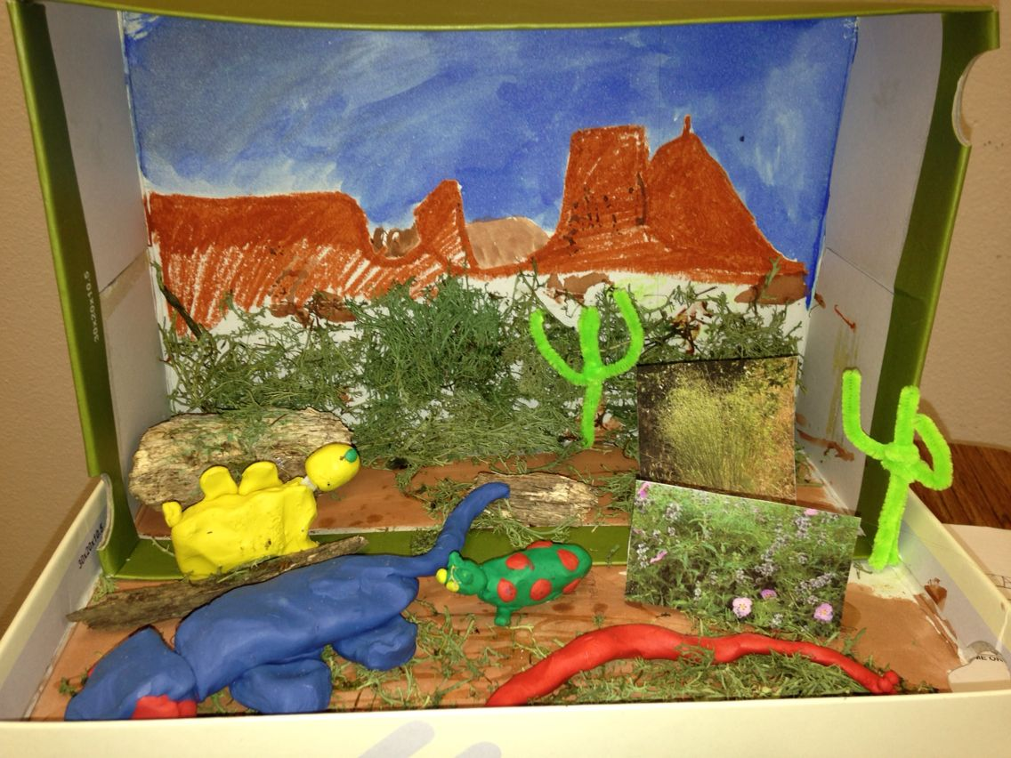 Desert School Shadow Box Project - Year of Clean Water