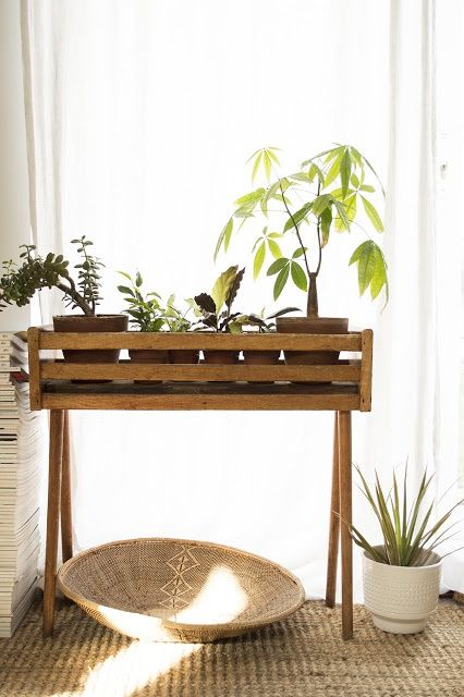 Plant table, probably easy to make with some 2x4s ...
