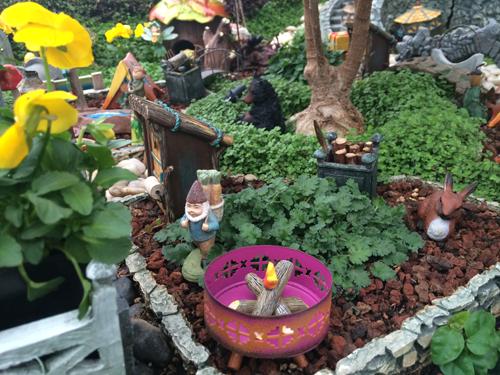 Genial Fairy Garden, Gnome Tagawa Gardens