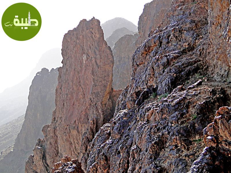الصعود لقمة جبل أحد ومشاهدة المدينة المنورة من أعلى الجبل أكثر من رائع صور وفيديو منتديات طيبة نت Places To Visit Natural Landmarks Landmarks