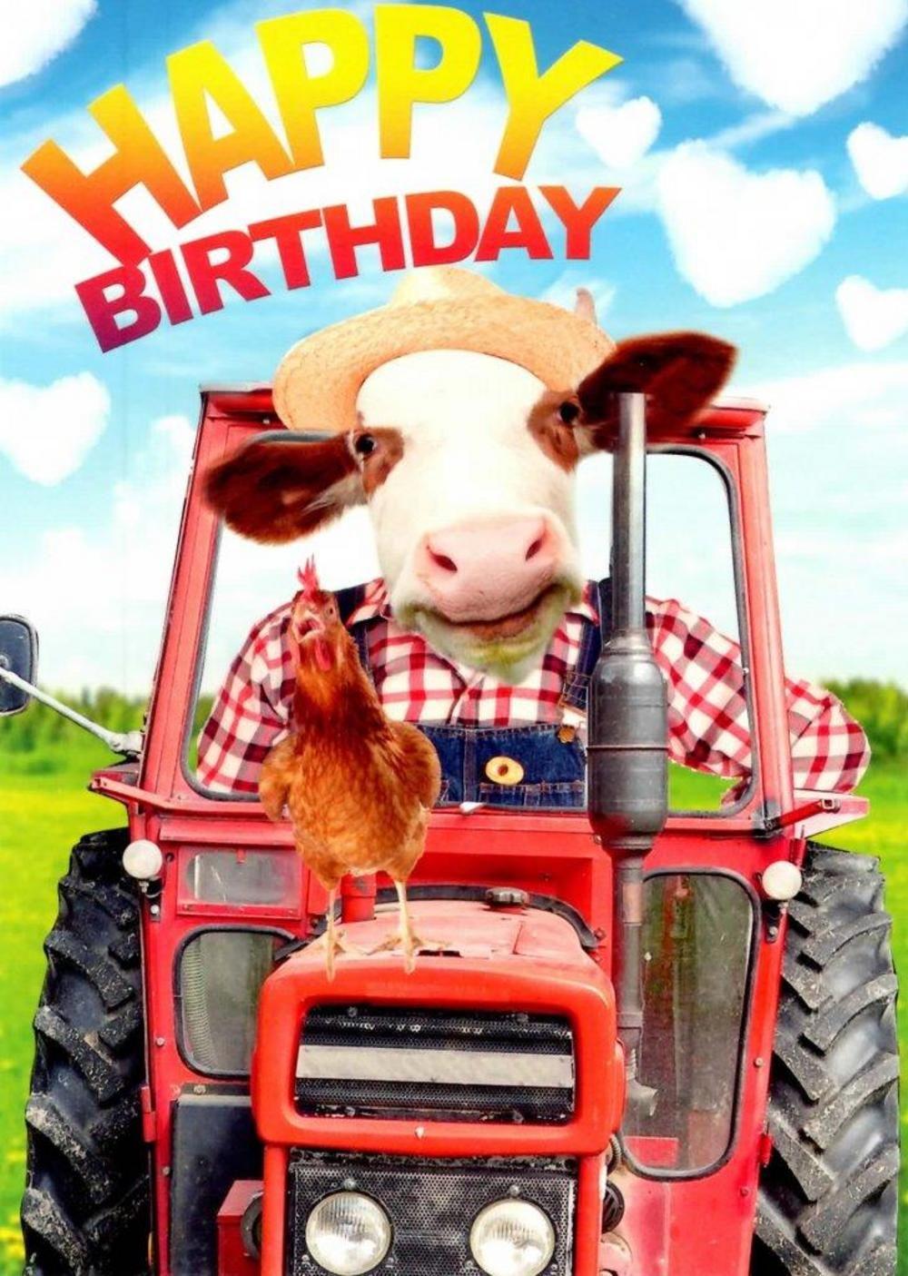 Farm Fun Happy Birthday Greeting Card Herzliche Geburtstagsgrusse