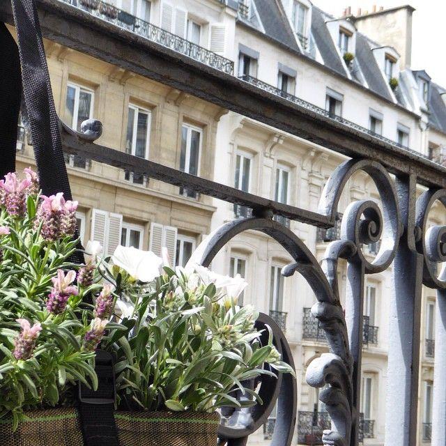 pot suspendu 10l bacsac pinterest balcon fleurs balcon et suspendu. Black Bedroom Furniture Sets. Home Design Ideas