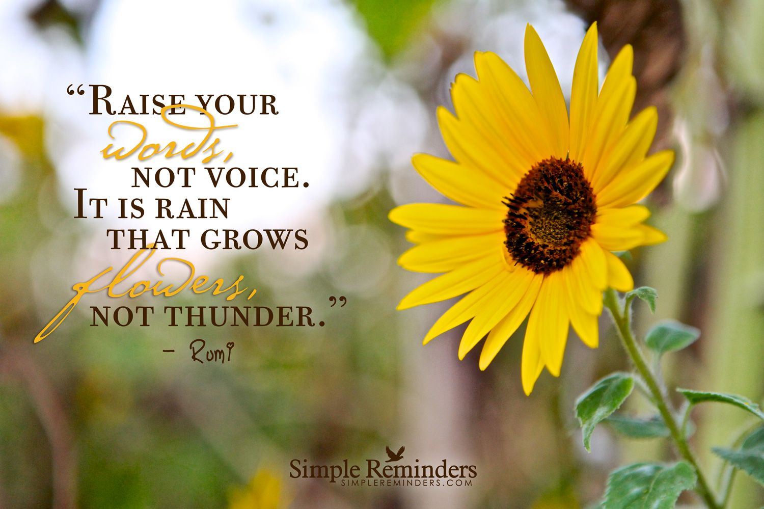 Raise your words, not voice. It is rain that grows flowers, not thunder. ~Rumi    #philosophy #rumi  @SIMPLE Comunicación Comunicación Reminders