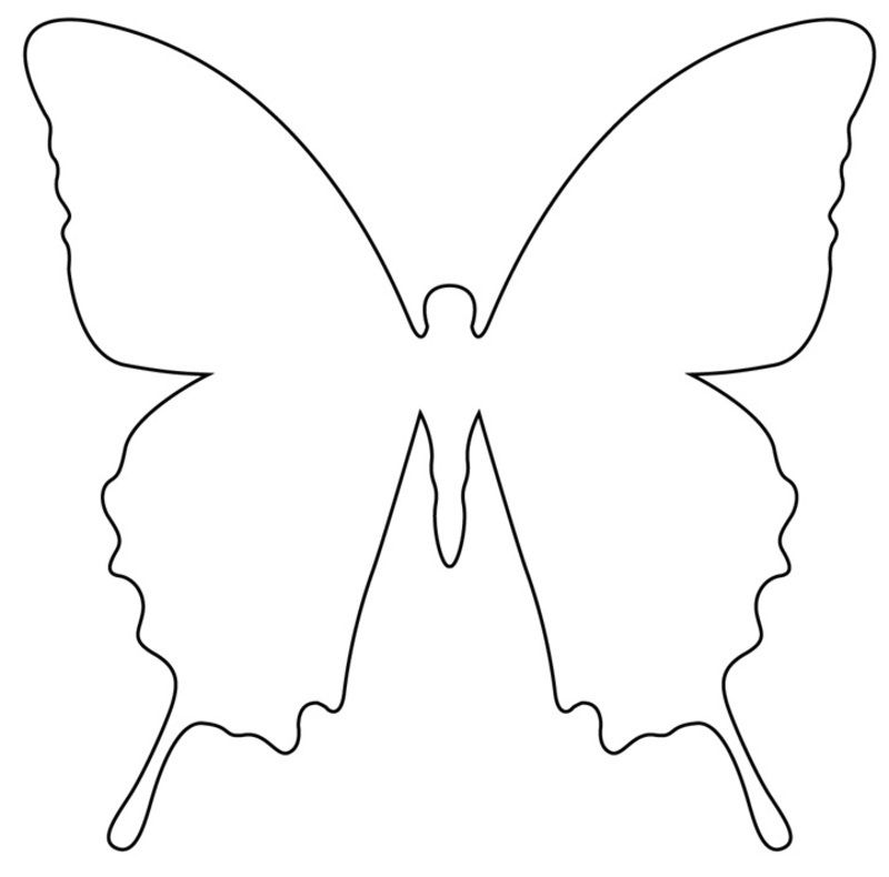 Papillons 3 Jpg Gabarit Papillon Papillon A Imprimer Papillon