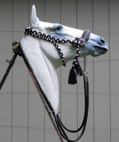 """""""He assesses the Bedouin bridle as by far the safest bridle to use on a horse. """"As we all know, horses respond to gentleness and deft handling. They love the skilled and gentle touch.  """"The horse is so superbly 'aware', it is almost uncanny. We can never,"""