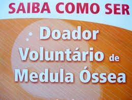 LITORAL CENTRO - COMUNICAÇÃO E IMAGEM: CEDACE vs Medula Óssea | Apresentação