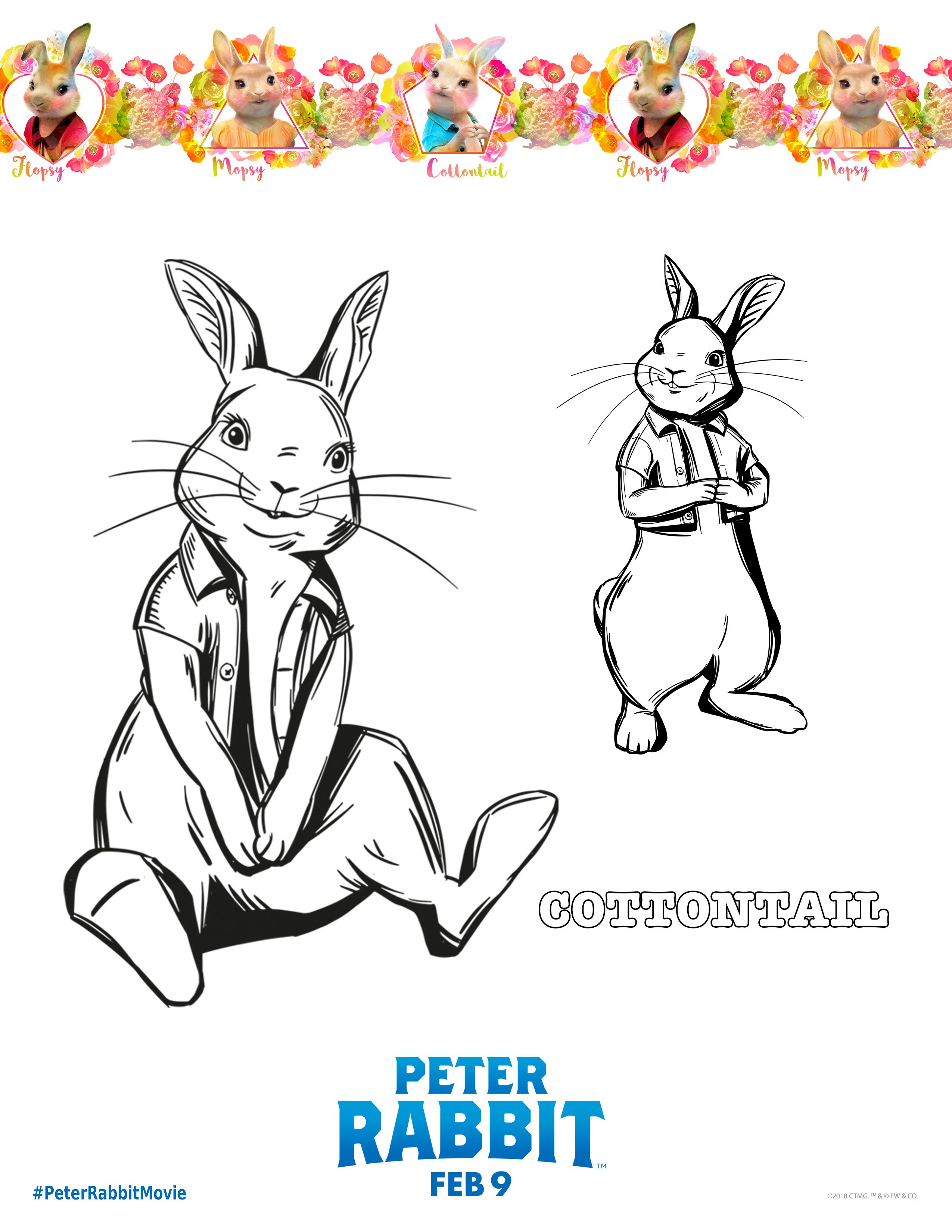 Pin On Peter Rabbit
