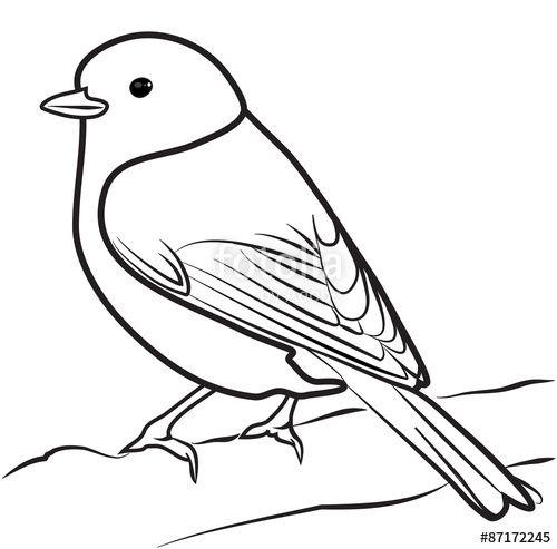 image result for bird outline