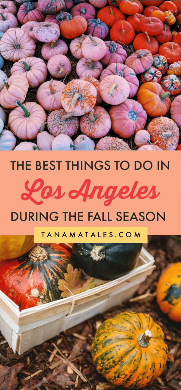 Things To Do In Los Angeles During The Fall Tanama Tales In 2020 Fall Travel Destination Us Travel Destinations Usa Travel Destinations