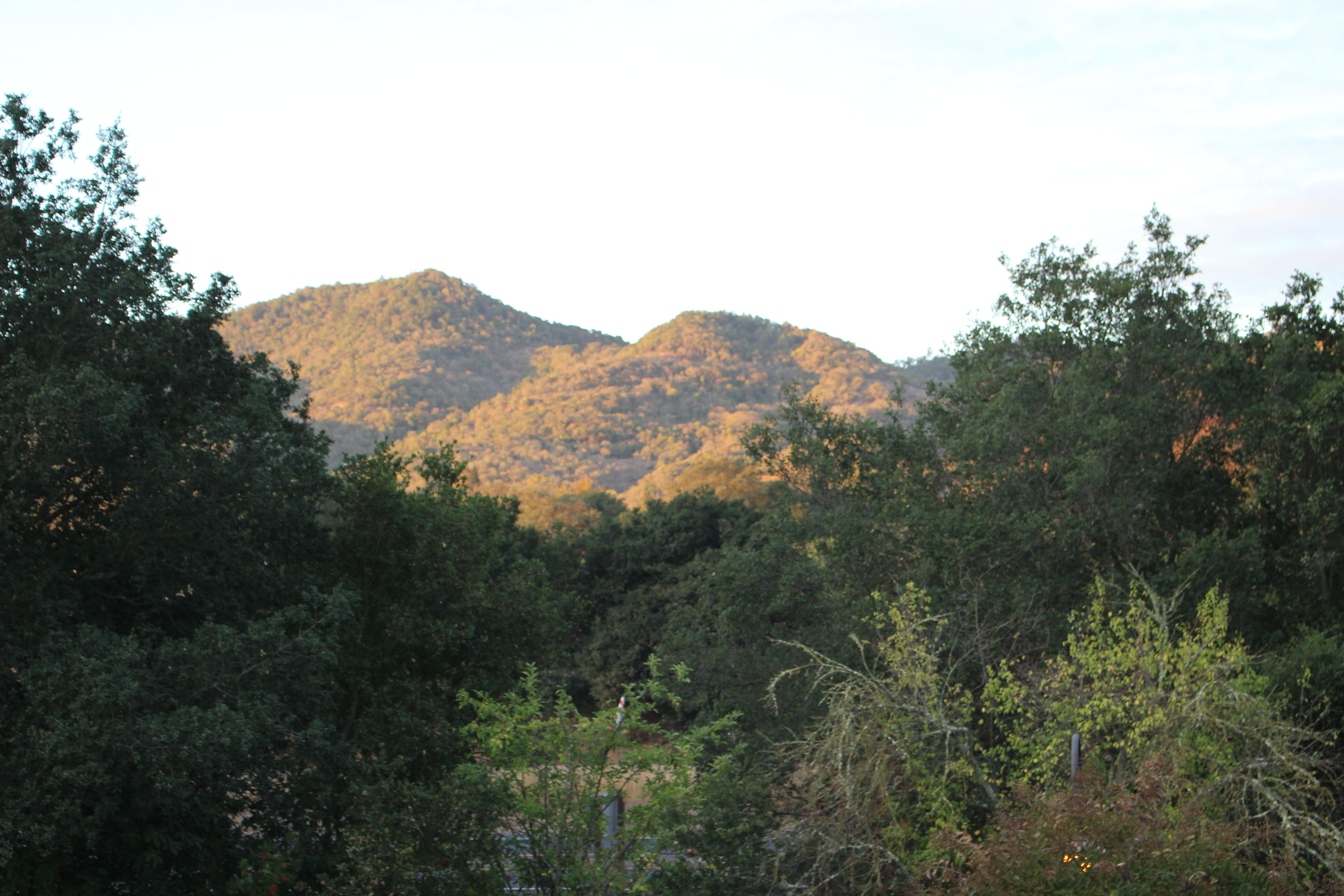 Yountville (Napa) California