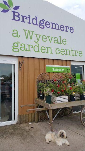 Bridgemere Garden Centre Nantwich Cheshire Garden