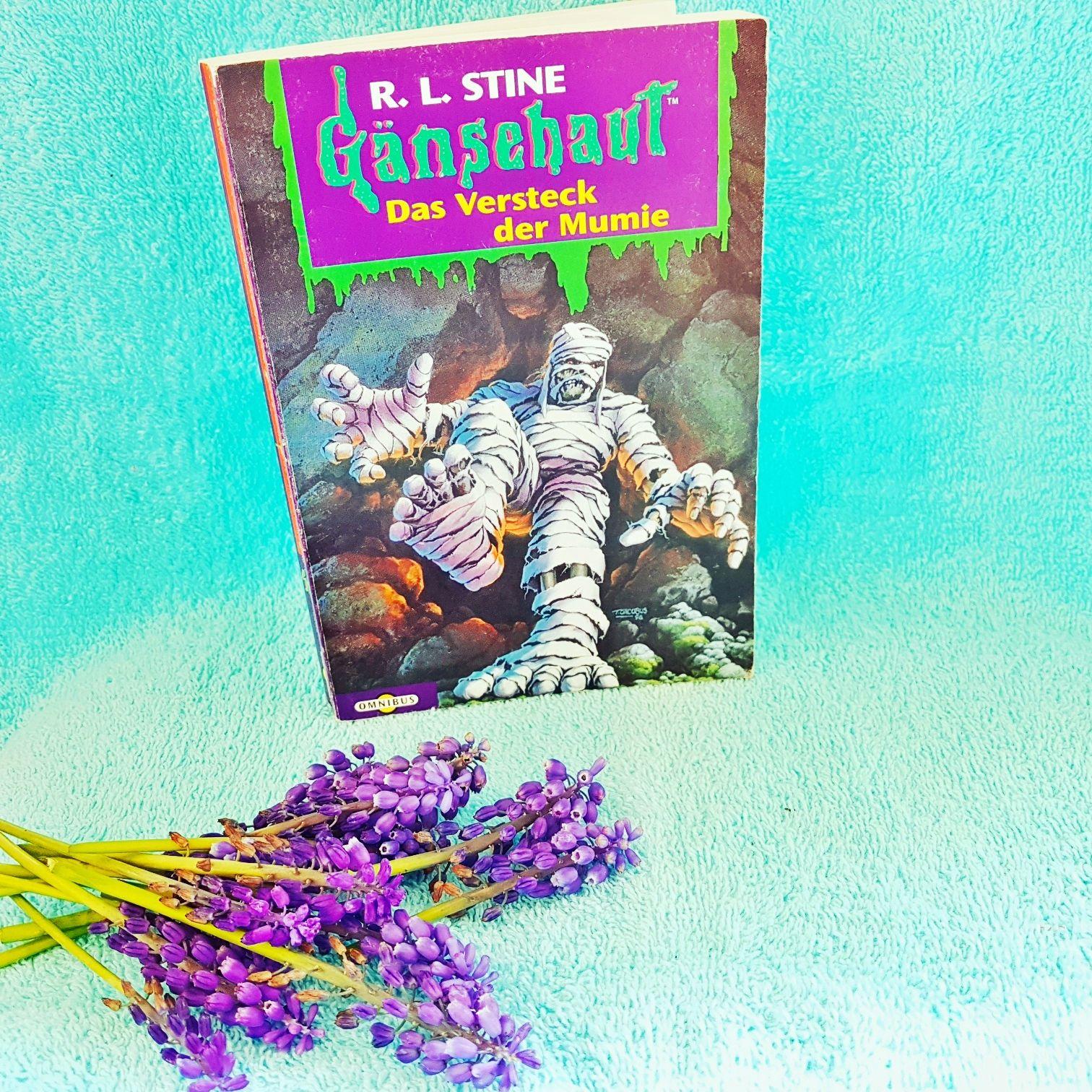 Gänsehaut Das Versteck der Mumie von R.L. Stine