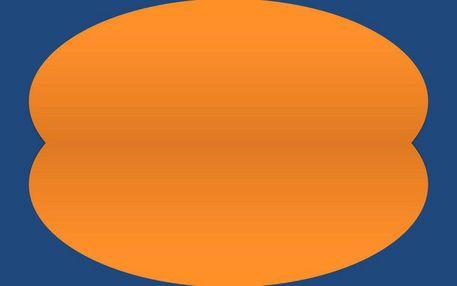 Clear-1-orange-on-blue-tribute-to-ellsworth-kelly-von-niko-bayer-skal