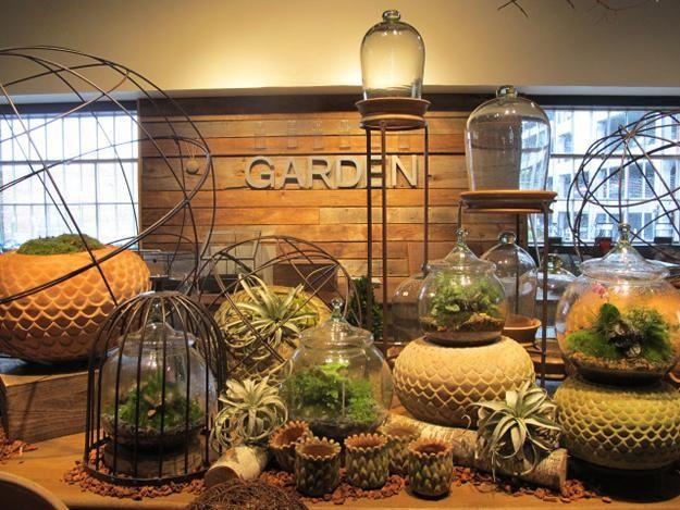 Garden Ping In Atlanta
