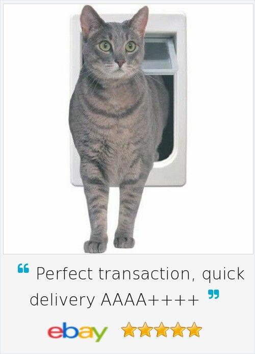 Chubby kat cat door