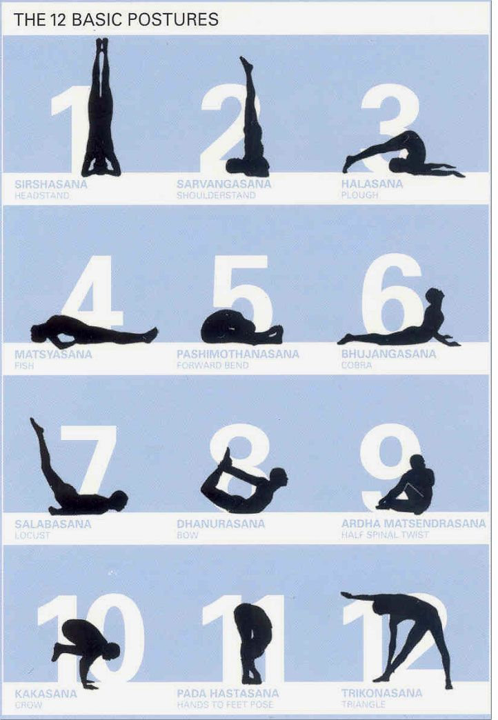 Sivananda Series The Twelve Basic Postures Sivananda Yoga Rishikesh Yoga Yoga Asanas
