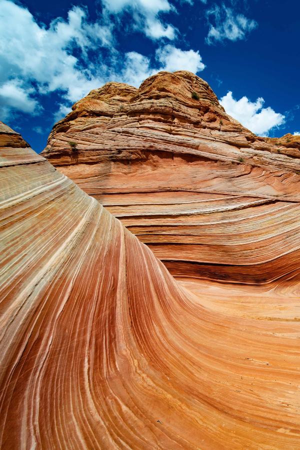 The Wave Coyote Butte In Kanab Utah Utah Road Trip Visit Utah Utah