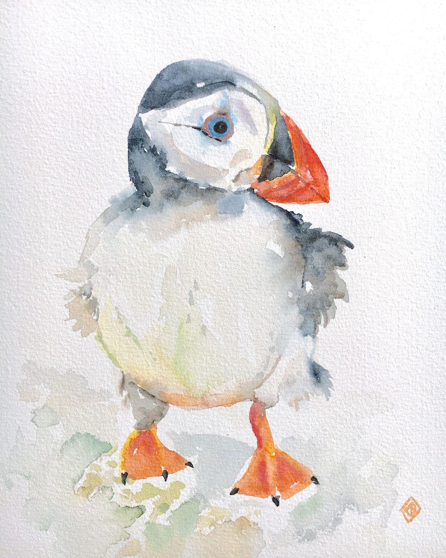 Puffin Original watercolor Artwork Nature birds of USA Bird art original Home wall art