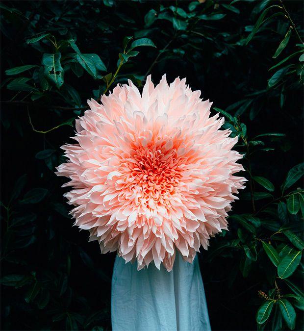 Increíbles flores gigantes de papel de Tiffanie Turner
