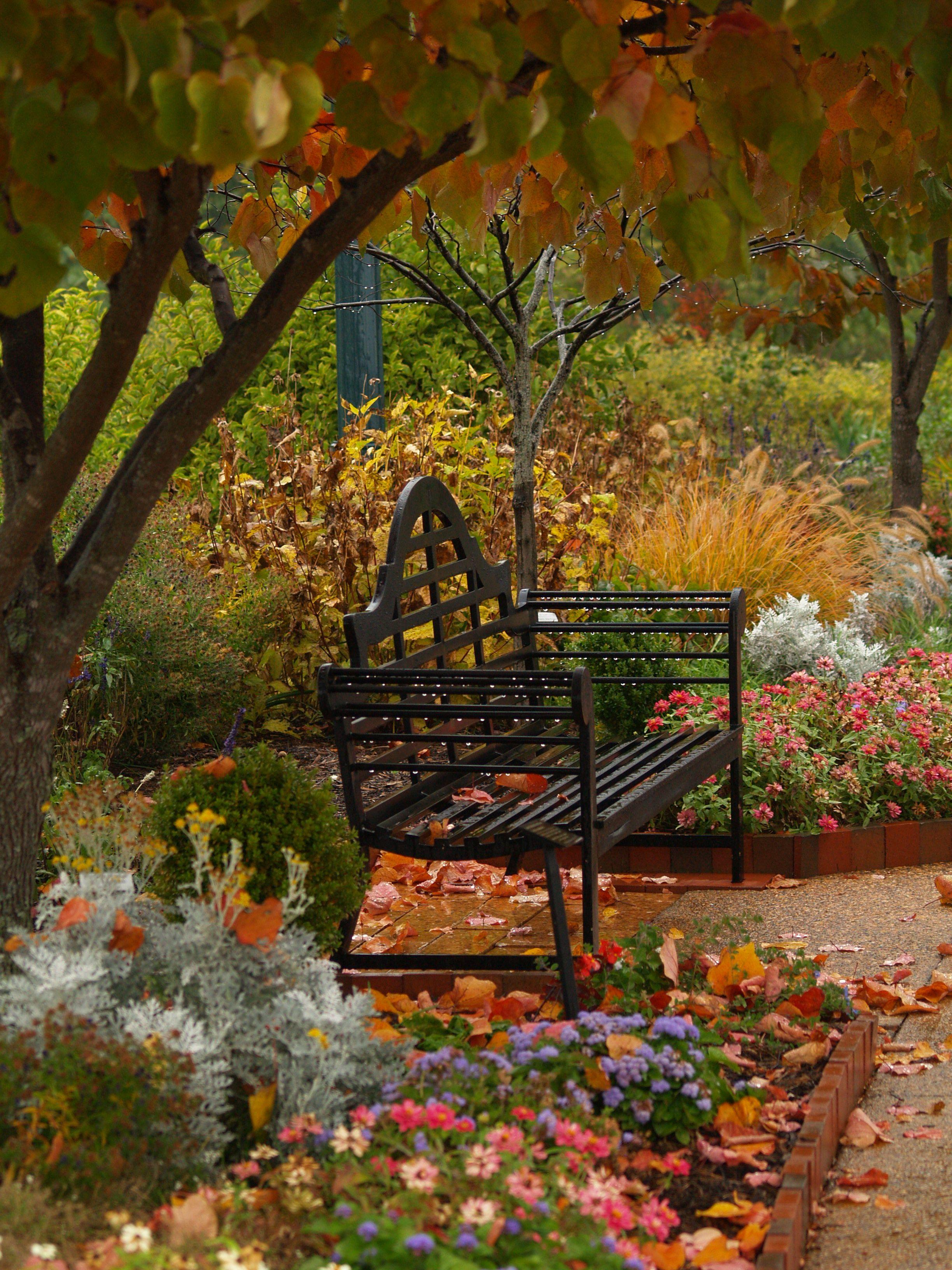 Fall & Thanksgiving (Merveilleux Jardin D'Automne