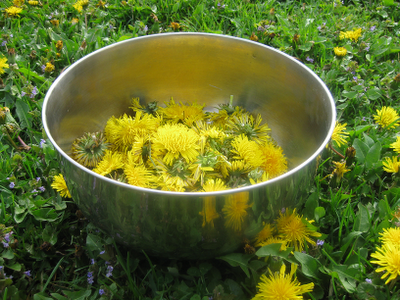 Photo of Dandelion Cordial from the Redwall series by Brian Jacques.