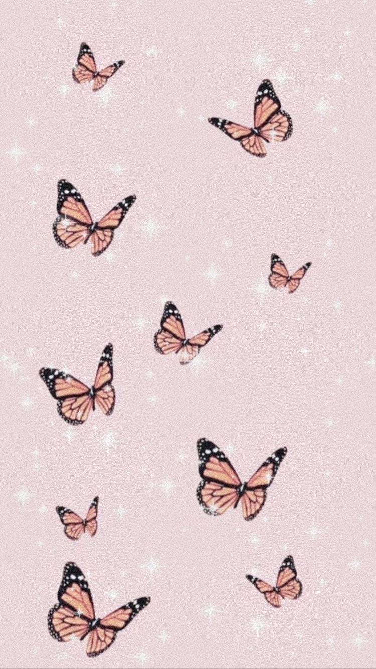 Pink Butterfly Background Butterfly Background Cute Patterns Wallpaper Butterfly Wallpaper Iphone