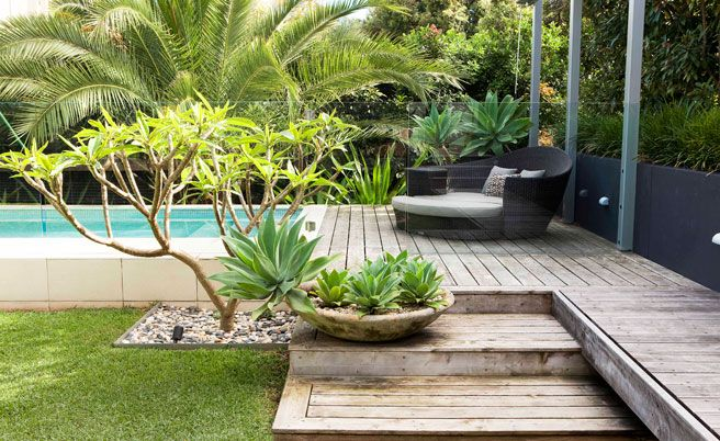 The cullen building with main vue our process with cos for Plants for pool area