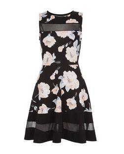b94d4540d Cameo Rose Black Floral Print Mesh Panel Skater Dress | New Look ...